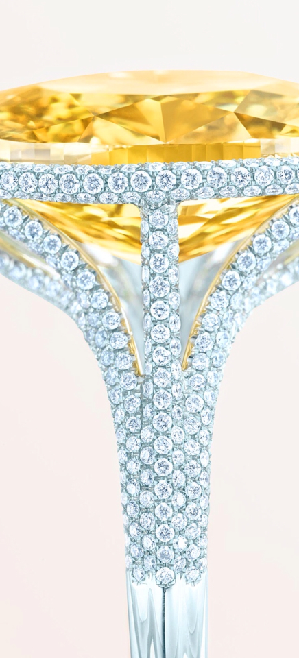 Tiffany-Co.-Yellow-Diamond-Ring-Blue-Book-Spring-2014-Haute-Tramp-Blog.jpg